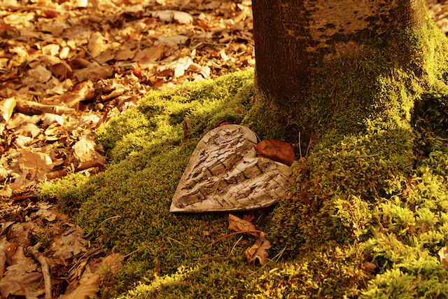 Green Burial at End of Life