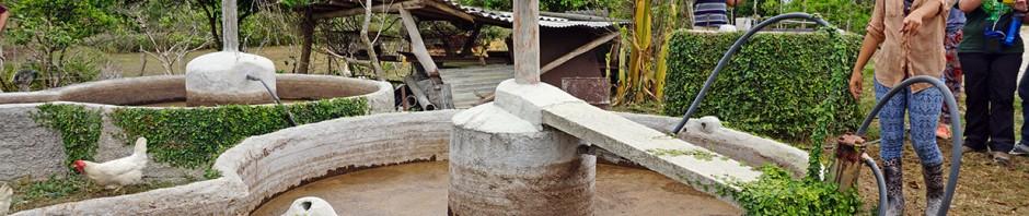 agroecology in Cuba