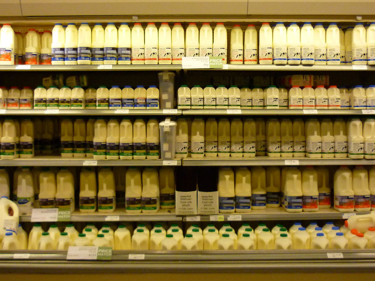 full-fat-dairy