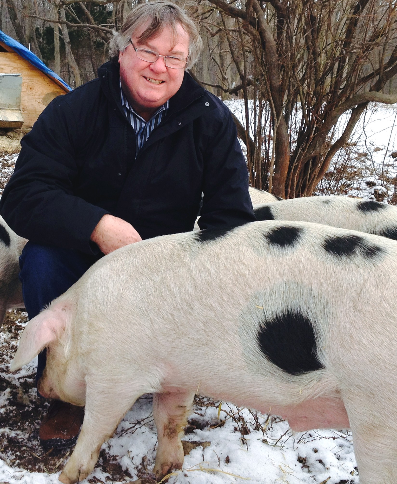 Author Barry Estabrook with pigs at Glynwood Institute, NY