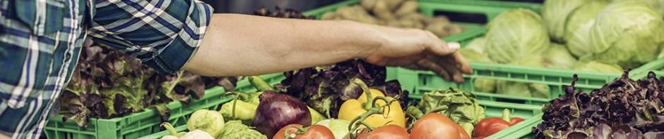 food hub program