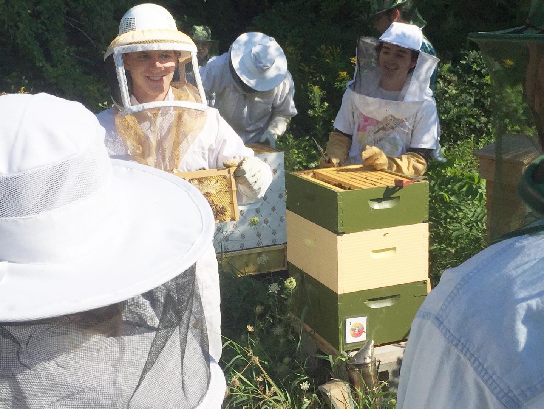 uvm-beekeepers