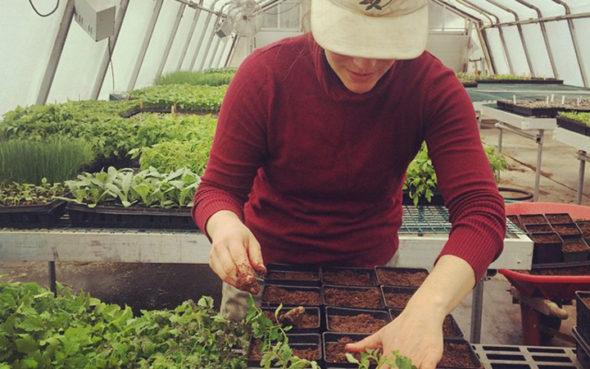 uvm-farmer-training-job