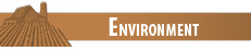 Environment Category
