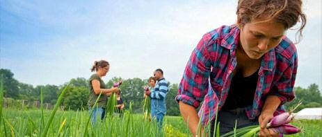 Farmer Training Program Image