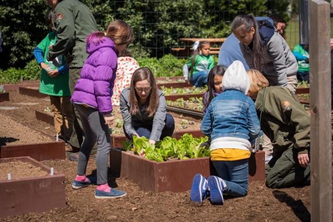 farm-to-school-success