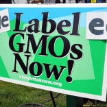 The Vermont GMO food labeling law will go into effect in 2016.